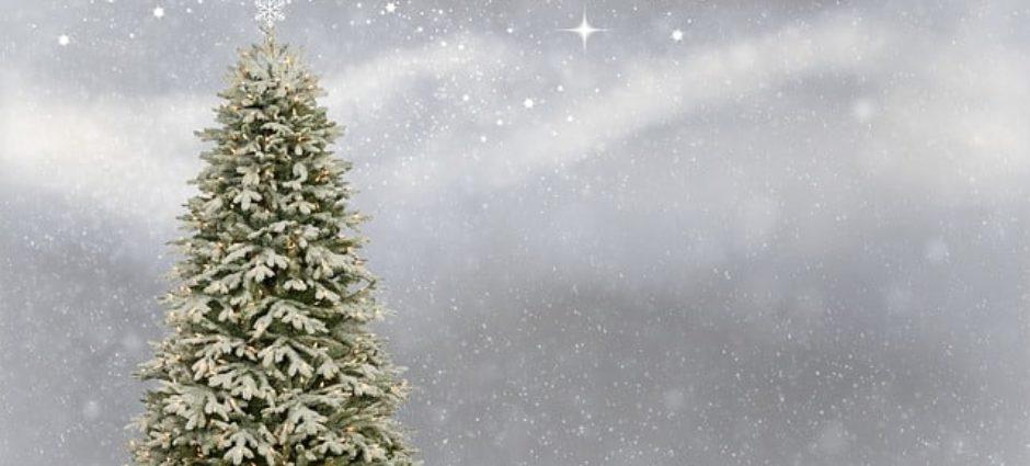 A Full Pneus deseja a todos um Feliz Natal!